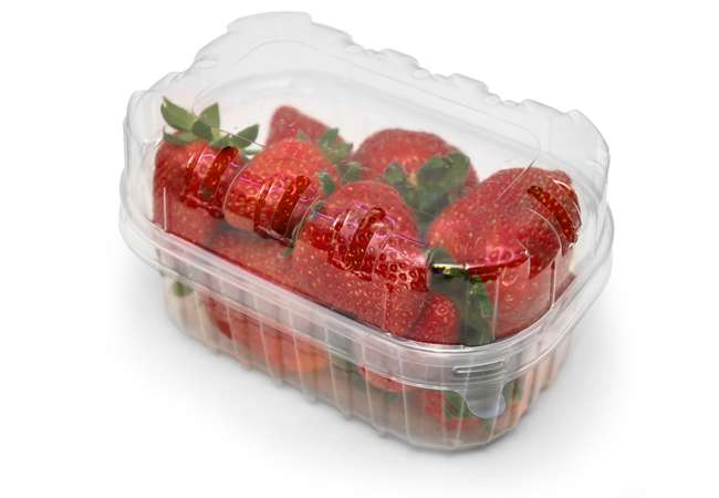 Food Packaging | Strawberry Punnets | Packaging Distribution Ireland | Packaging Dublin | Abco Kovex
