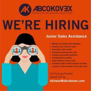 Junior Sales Assistance